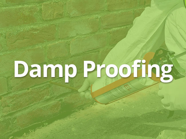 damp proofing specialist