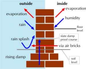 rising damp proofing